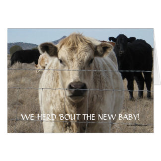 New Baby Congratulations - Cattle Herd - Western Greeting Cards