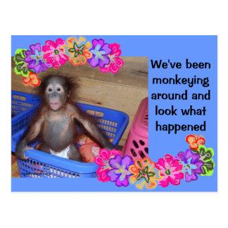 New Baby Monkey Business Postcard