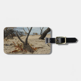 New Beginings Luggage Tag