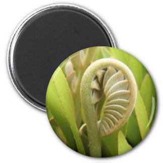 New Beginning for the Cardboard Palm 2 Inch Round Magnet