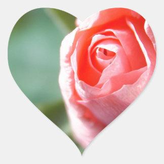 New Beginning Rose Heart Sticker