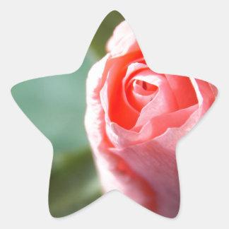 New Beginning Rose Star Sticker