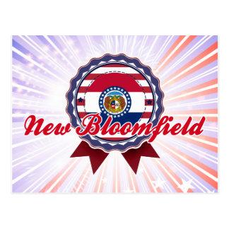 New Bloomfield, MO Postcard