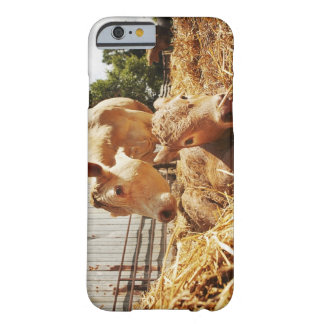 New born calf and mom barely there iPhone 6 case