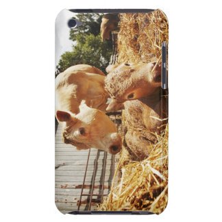 New born calf and mom iPod touch Case-Mate case
