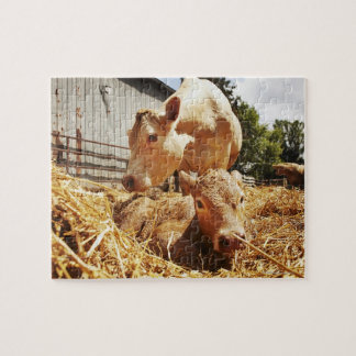 New born calf and mom jigsaw puzzle