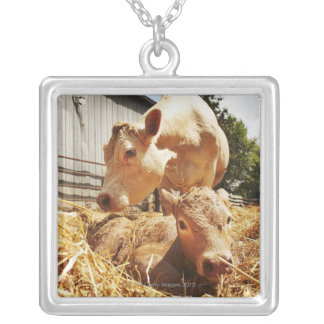 New born calf and mom silver plated necklace