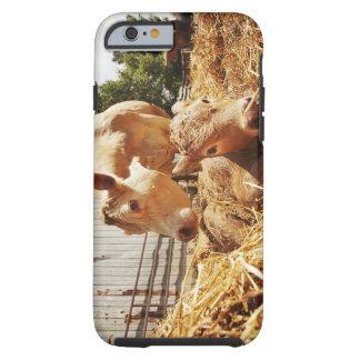 New born calf and mom tough iPhone 6 case