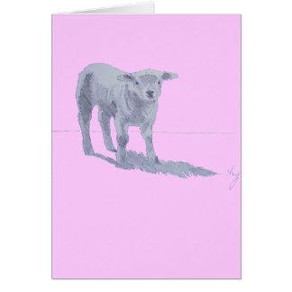 New born lamb pencil sketch card