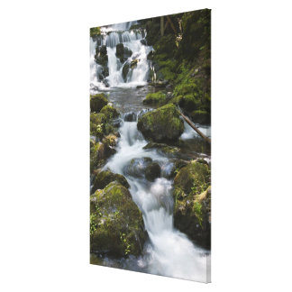 New Brunswick, Canada. Dickson Falls in Fundy Stretched Canvas Print