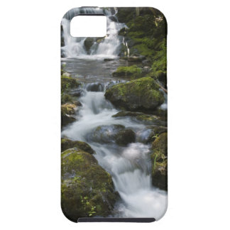 New Brunswick, Canada. Dickson Falls in Fundy iPhone SE/5/5s Case