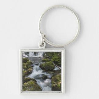 New Brunswick, Canada. Dickson Falls in Fundy Silver-Colored Square Keychain