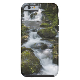 New Brunswick, Canada. Dickson Falls in Fundy Tough iPhone 6 Case