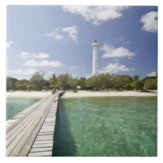 New Caledonia, Amedee Islet. Amedee Islet Pier. Tile