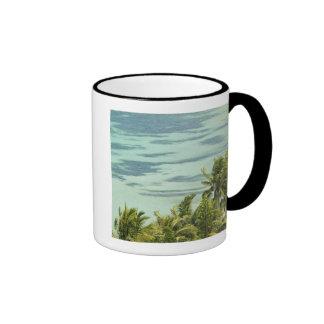 New Caledonia, Grande Terre Island, Noumea. Anse Mugs