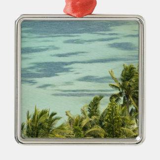 New Caledonia, Grande Terre Island, Noumea. Anse Ornaments