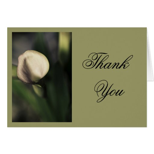 New Calla Lily, Soft Pink, Floral Photo, template Greeting Card