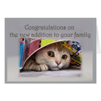 New Cat Addtion to Family Card