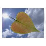 New Cottonwood Leaf Greeting Card
