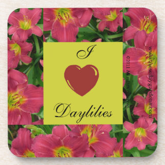 New Day Gardens Coaster Sets- I Love Daylilies PM