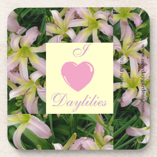 New Day Gardens Coaster Sets- I Love Daylilies WLB
