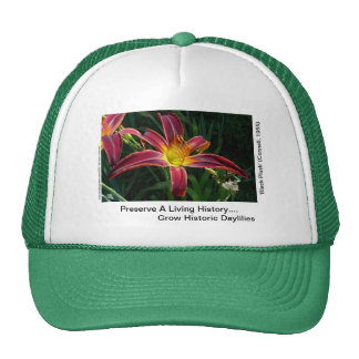 New Day Gardens Hat: Grow Historic Daylilies