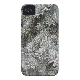 New Day Gardens iPhone Case- Frosted Spruce iPhone 4 Cover