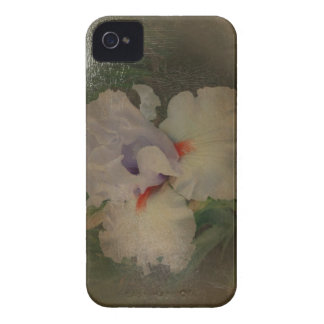 New Day Gardens iPhone Case Iris 'Friendly Fire' A