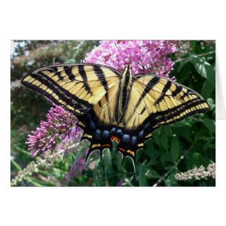 New Day Gardens Notecard-Western Swallowtail Card