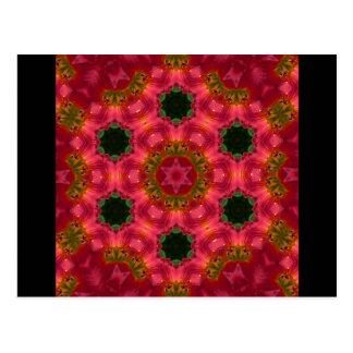 New Day Gardens Postcard- Kaleidoscopic Daylily BF
