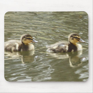New Ducklings Mouse Pad