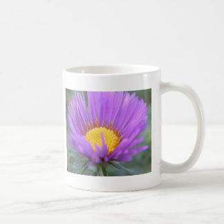 New England Aster Classic White Coffee Mug