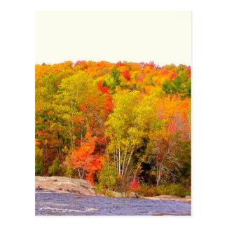 New England Autumn 118 Postcard