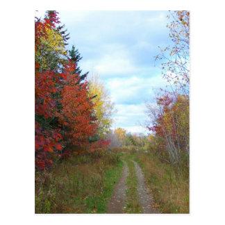 New England Autumn Postcard