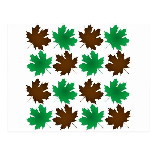 New England East Coast Autumn Leaves Postcard