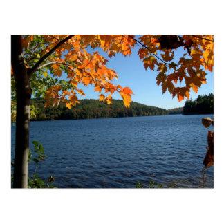 New England Fall Lake Postcards