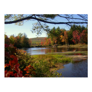 New England Fall Pond Postcards