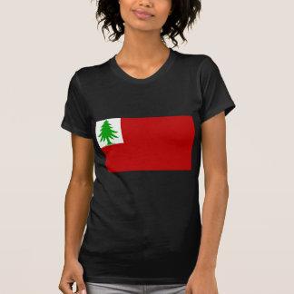 New England Flag T-shirts