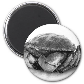 New England Rock Crab II 2 Inch Round Magnet