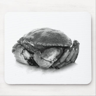 New England Rock Crab II Mouse Pad