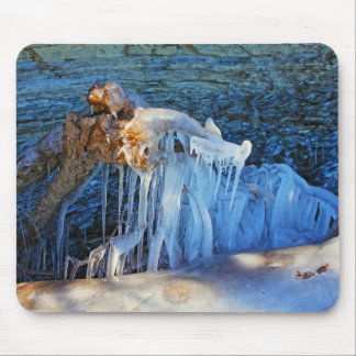 New England Winter Icy Branch Lake Champlain Photo Mouse Pad