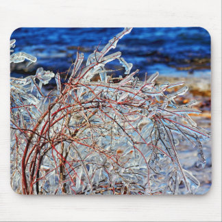 New England Winter Icy Branches Lake Champlain Mouse Pad