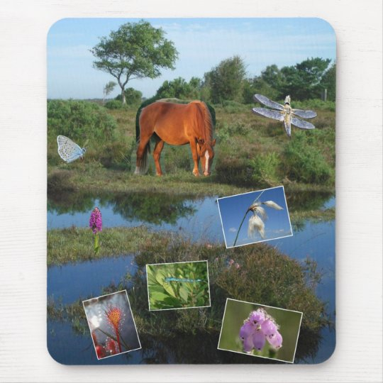 New Forest collage mousemat Mouse Pad