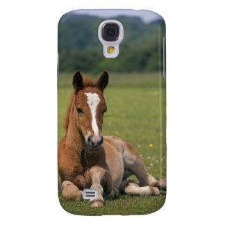 New Forest Foal iPhone 3 Speck Case Galaxy S4 Cases