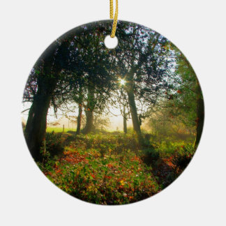 New Forest Garden Ornaments