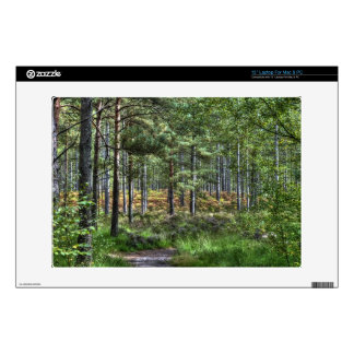 """New Forest Hampshire England Forest Scene 13"""" Laptop Skins"""