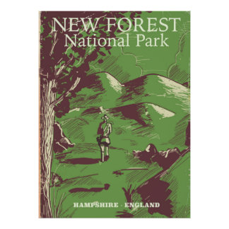 New Forest, Hampshire, England Poster