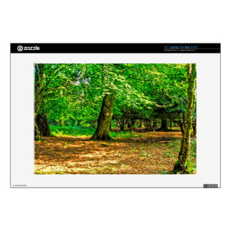 New Forest National Park Hampshire England Woods Laptop Skin