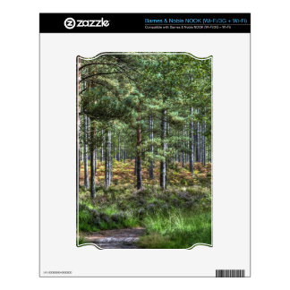 New Forest National Park Hampshire England Woods NOOK Skin