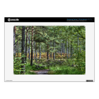 New Forest National Park Hampshire England Woods Samsung Chromebook Decals
